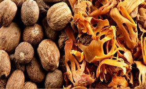 Nutmeg-exporter-supplier-2