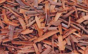 cinnamon-exporter-supplier-2